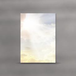 Trauerblätter, einzeln, Sonnenstrahlen